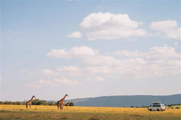 TanzaniaSafari