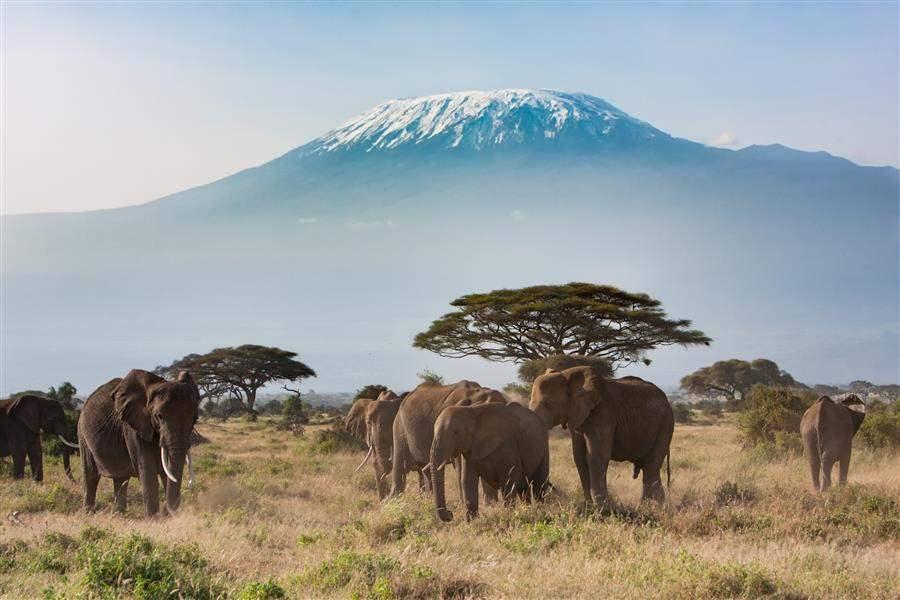 AmboseliNationalPark