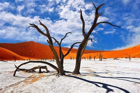 NamibaiSossusvleiDeadForest2