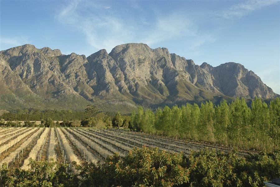 Franschhoek Country Houseand Villas Vineyards