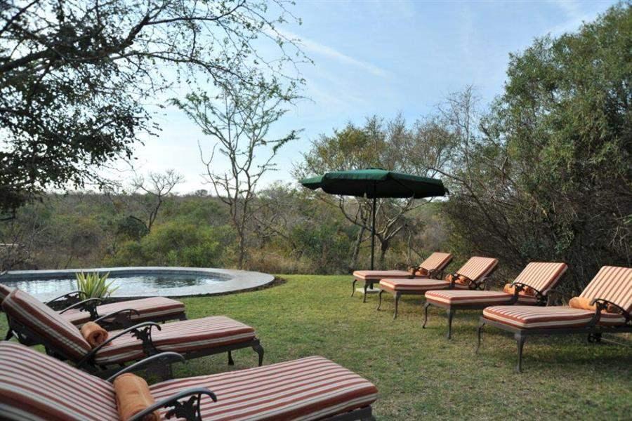 Thornybush Waterbuck Lodge Pool Sun Loungers