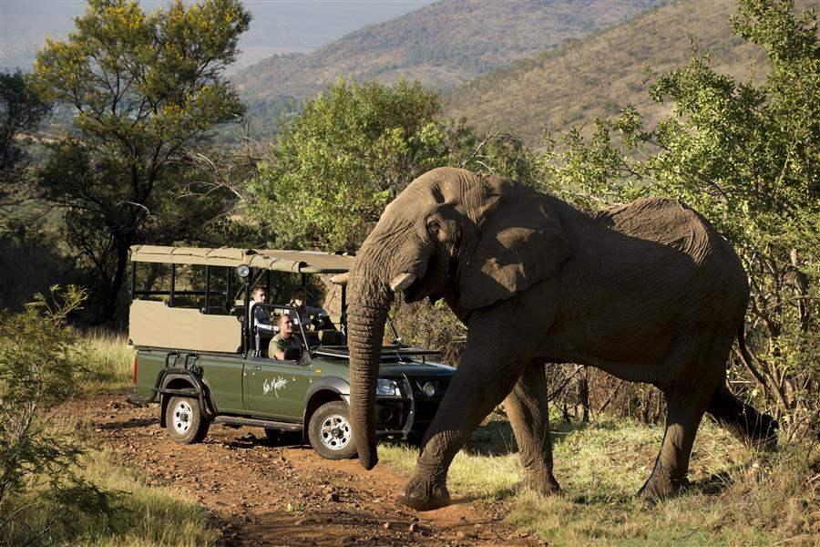 Kwa Maritane Bush Lodge Elephant Safari