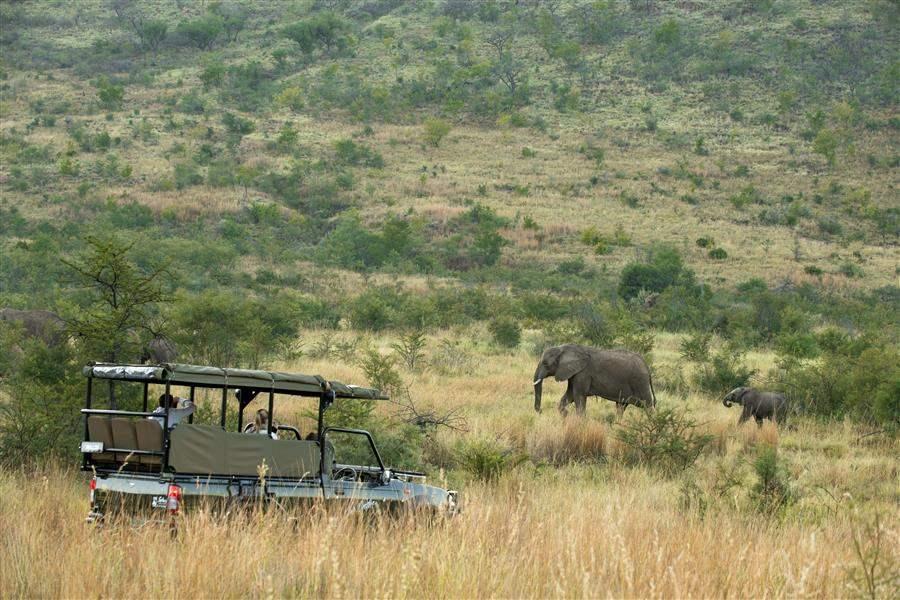 Kwa Maritane Bush Lodge Jeep Safari Elephants