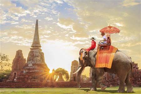 elephant family tour cambodia