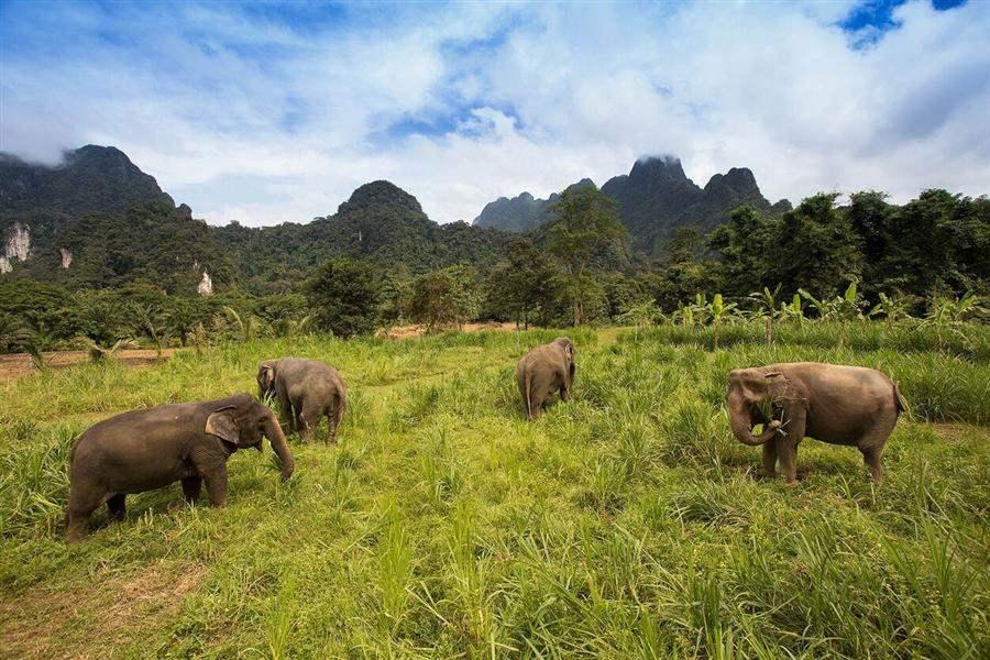 ElephantHills2