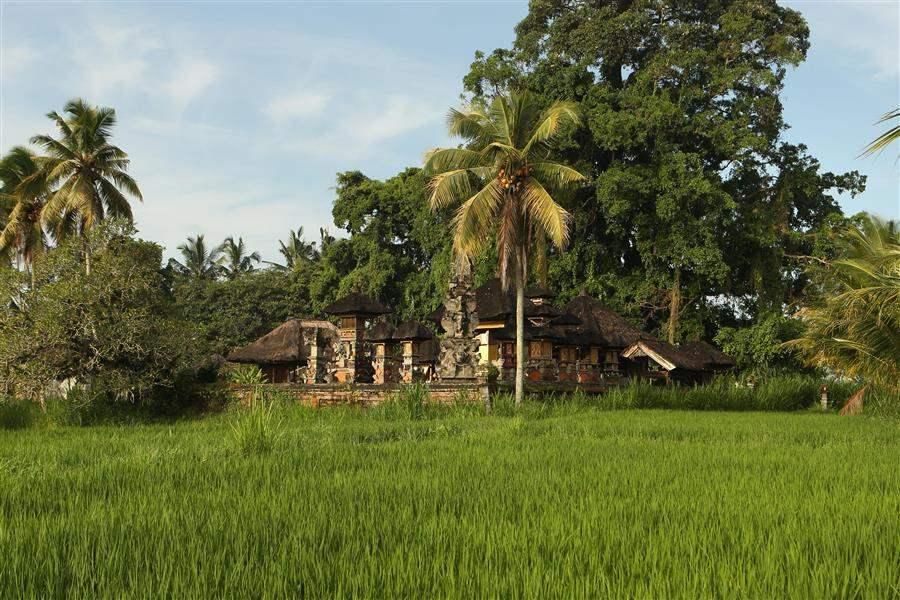 Alila Ubud Bali Exterior