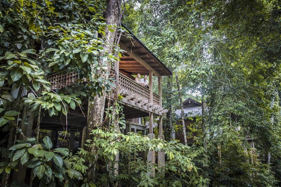 Rainforest Villa Exterior