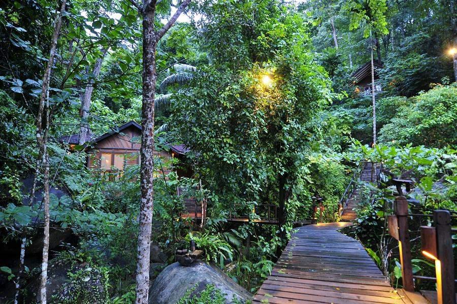 Japamala Resort Jungle Walk