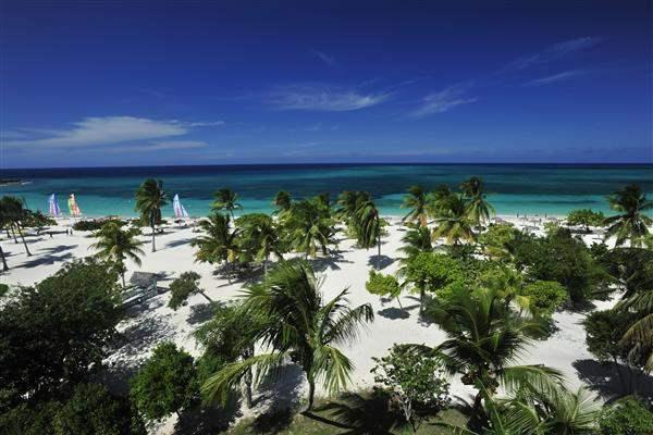 palm trees guardalavaca cuba