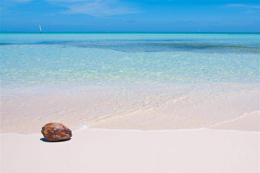 pure beach cayman islands