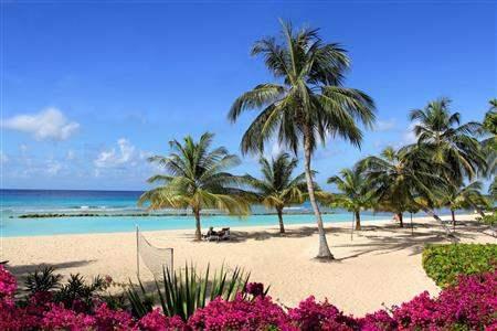 Coconut Court Beach Hotel Barbados Beach Palm Trees