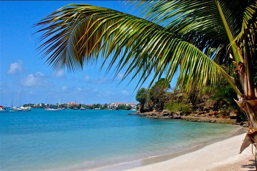 Calabash Grenada Hotel Beach View