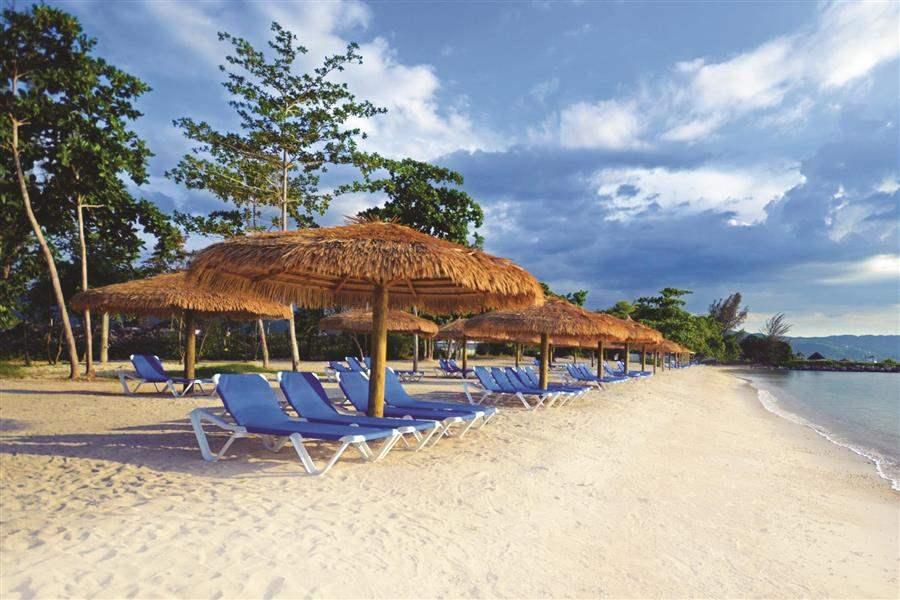 BeachPalapas