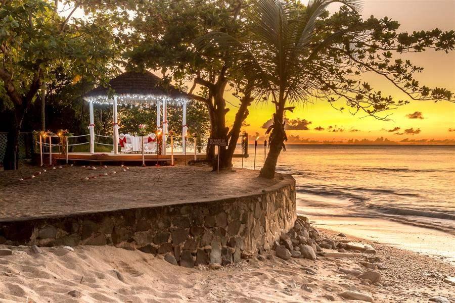 Almond Deck Sunset