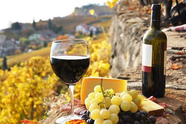 argentina mendoza wine 2