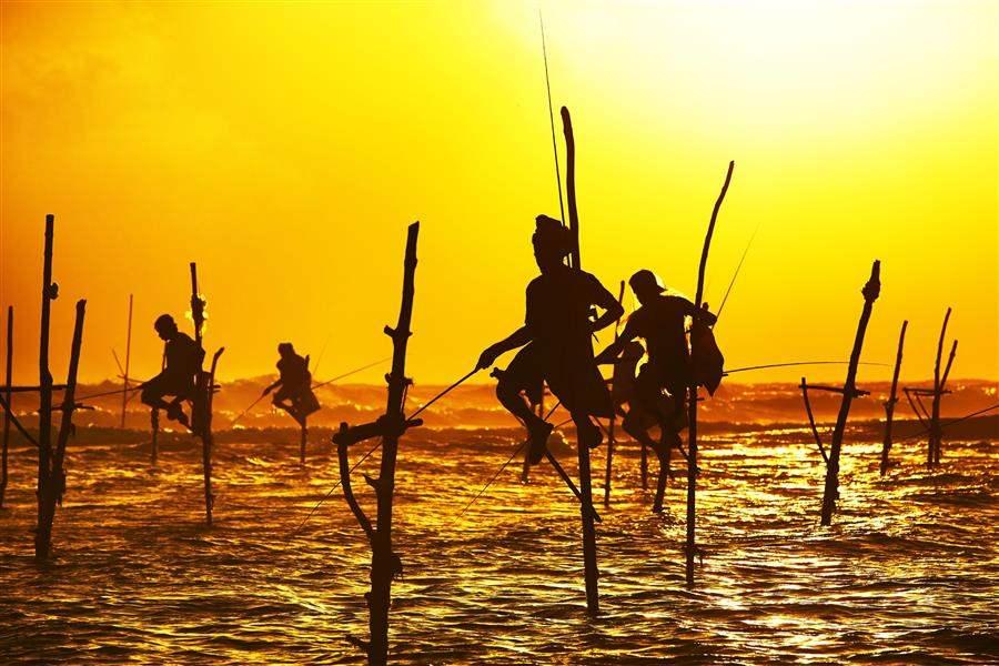 Sri Lanka Sunset Fisherman