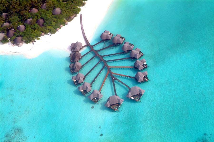 Coco Palm Dhuni Kolhu Aerial Lagoon Wing