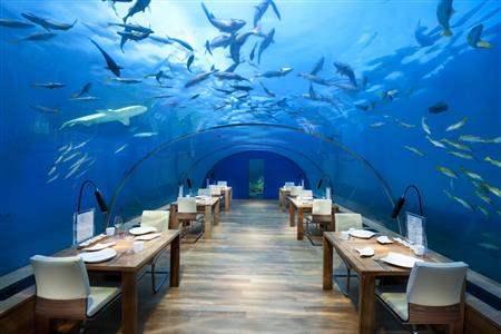 UnderwaterRestaurantNight