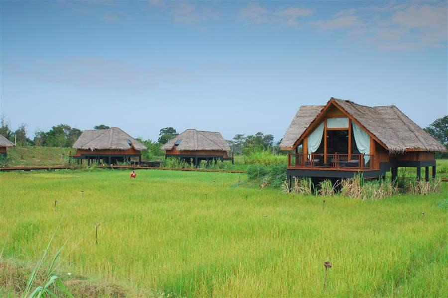 Jetwing Vil Uyana Paddy Dwellings