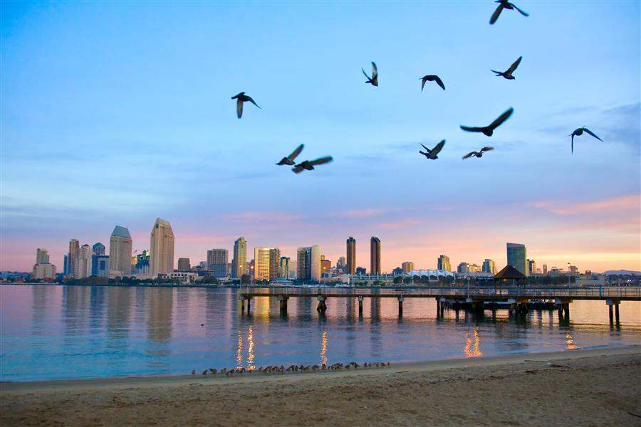 San Diego California dawn beach city