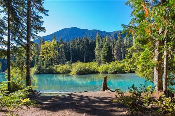 Cheakamus Lake Whistler BC