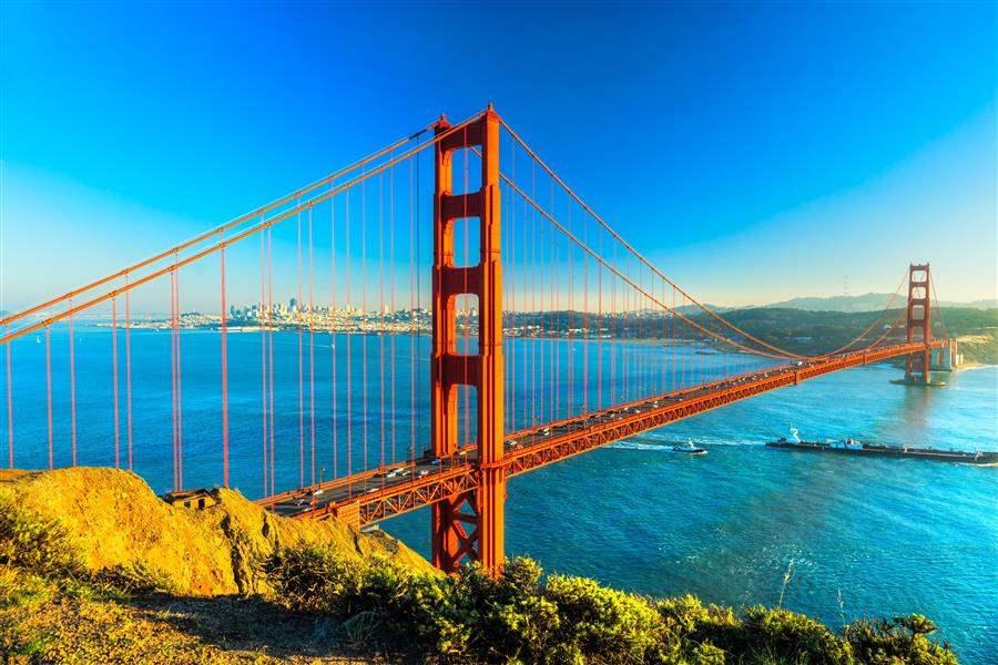 San Fran Bridge Day