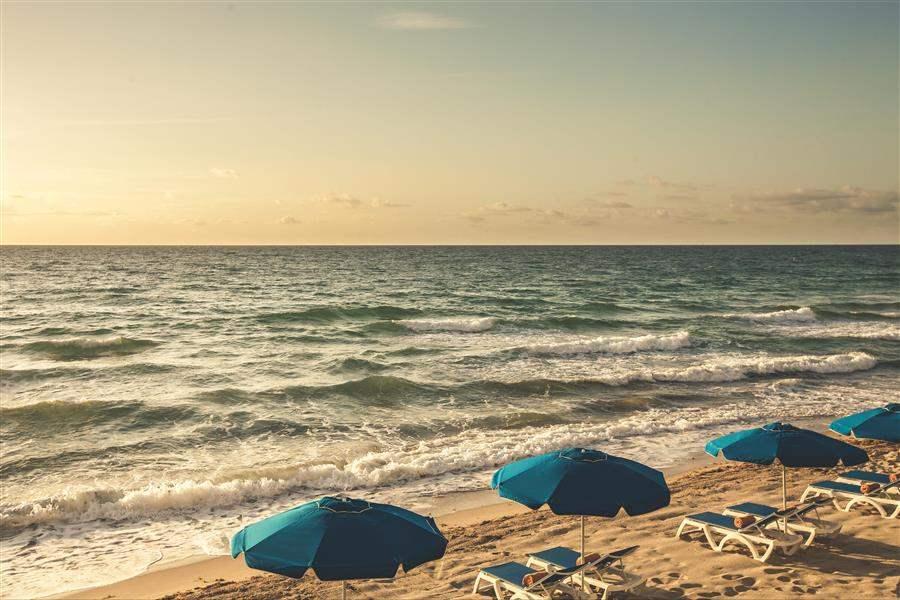 Pelican Grand Beach Resort Beach
