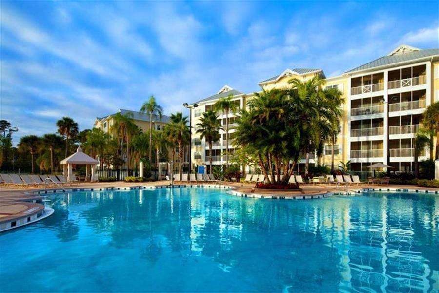 Sheraton Vistana Villages Resort Swimming Pool