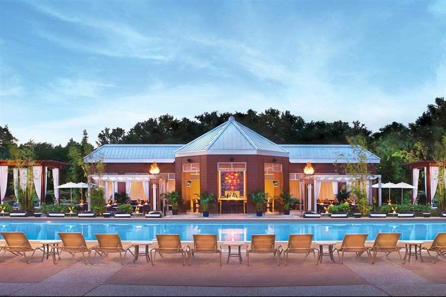 Walt Disney World Dolphin Resort Pool