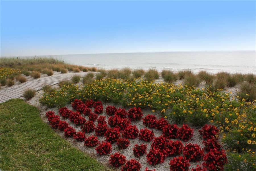 Costad Este Beach Resort Beach